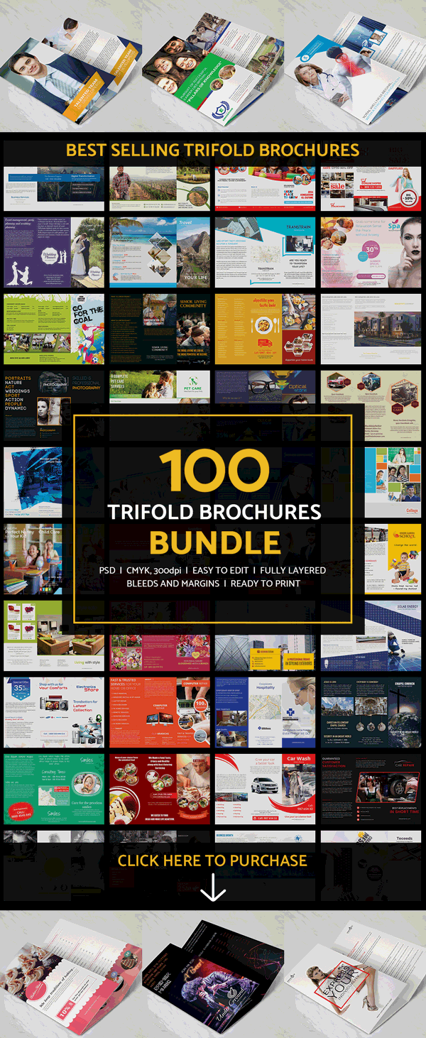 100 best tri fold brochures bundle