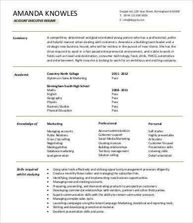 Account Executive Sample Resume Inspiration Decoration. Account