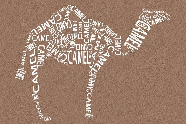 Camel Typography Art