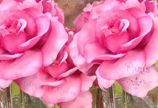 Pink Roses Floral Art