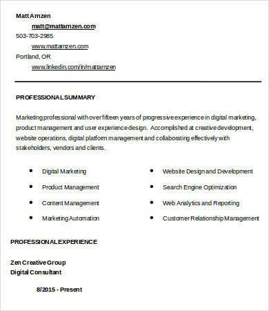 Digital Marketing Resume 7 Free Word Pdf Documents Downlaod