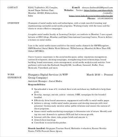 Digital Marketing Strategist Resume  Digital Media Resume