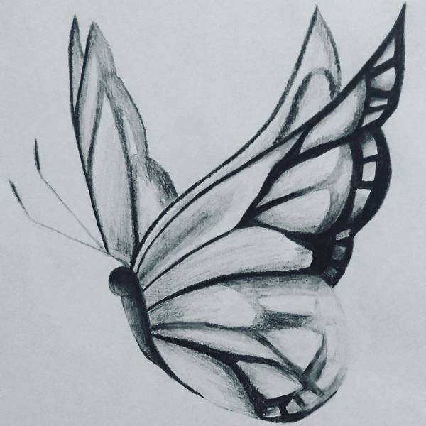 butterfly-art-drawing