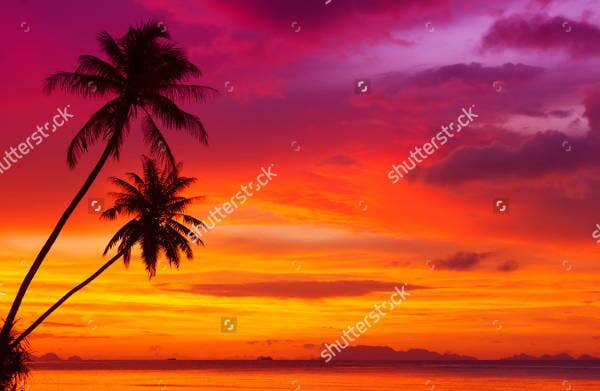 silhouette sunset photography1