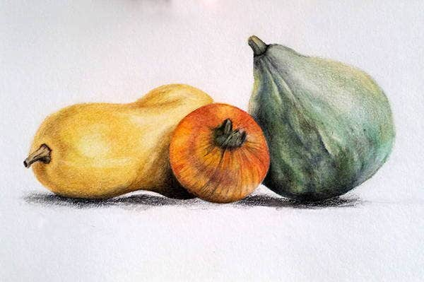 Still Life Colored Pencil Drawing