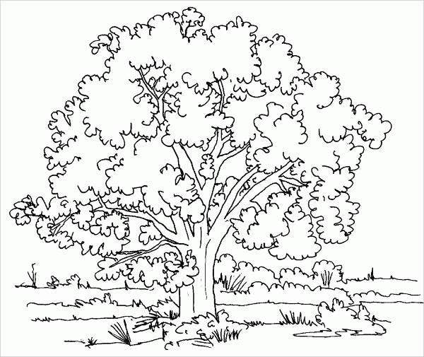 childrens nature coloring pages