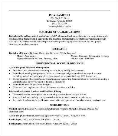 Professional Summary Resume Example