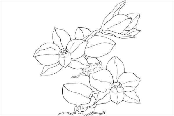 free printable flower coloring page for adults
