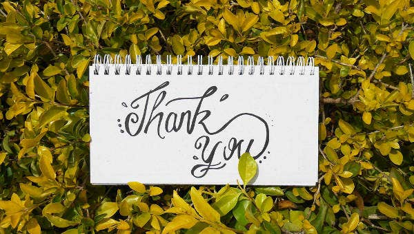 thank you letter for job offer templates