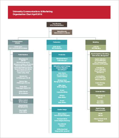 marketing organization chart template