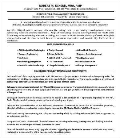 professional resume sles 9 free word pdf documents