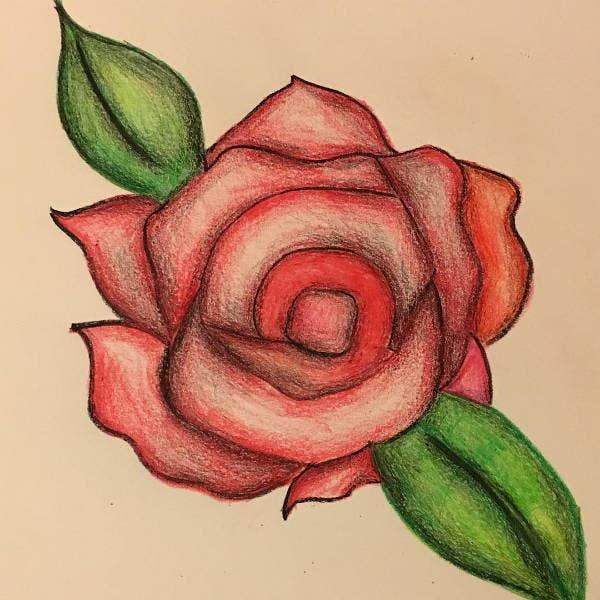 best rose drawings