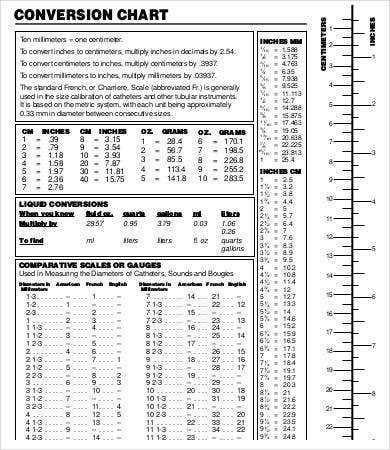 Editable Liquid Measurement Chart   Free Word Pdf Documents