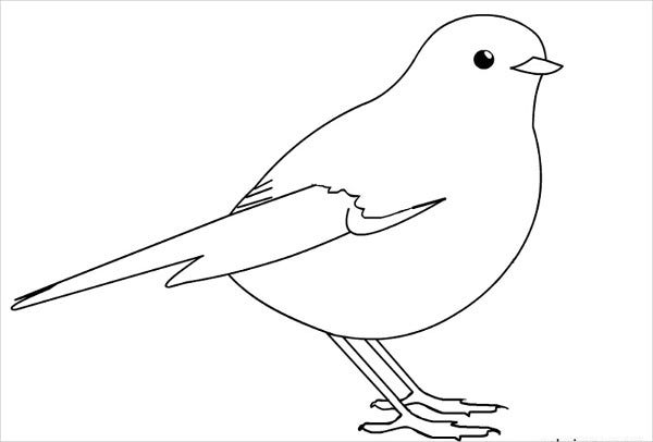 Bird Printable Design