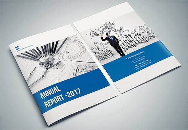 business-annual-report