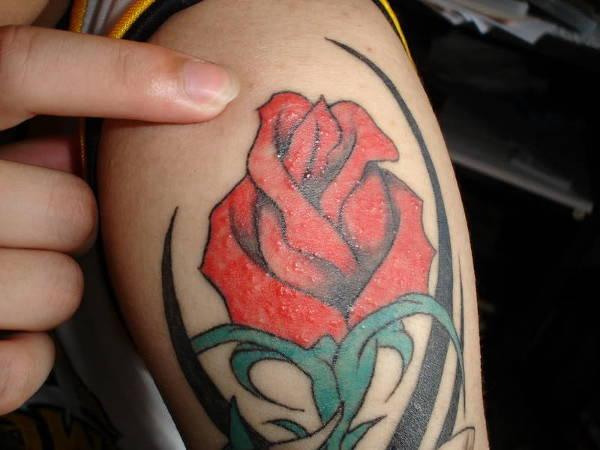 rose-tattoo-on-arm