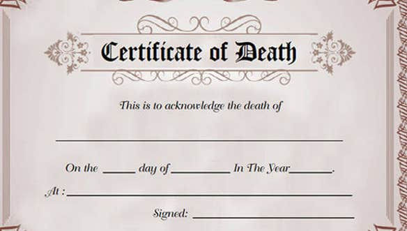 9 Death Certificate Template Free Sample Example Format Download Free Premium Templates