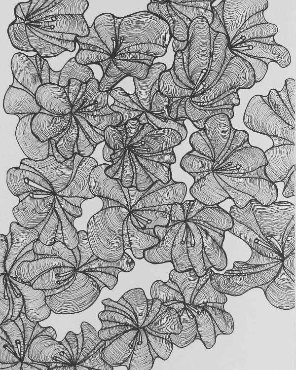 line drawing of flowers