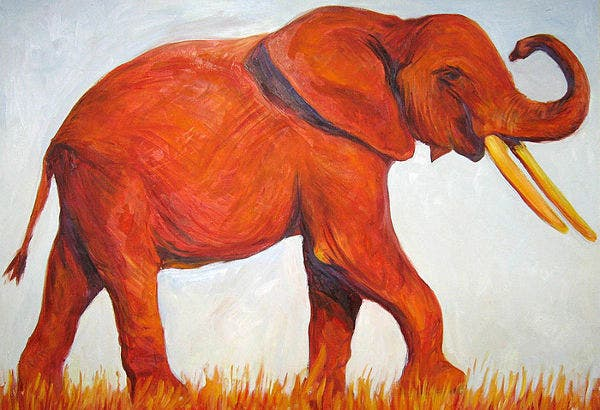 Red Color Elephant