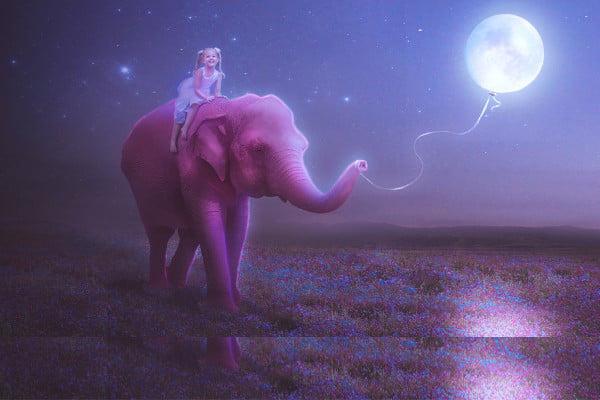 Elephant Fantasy Art