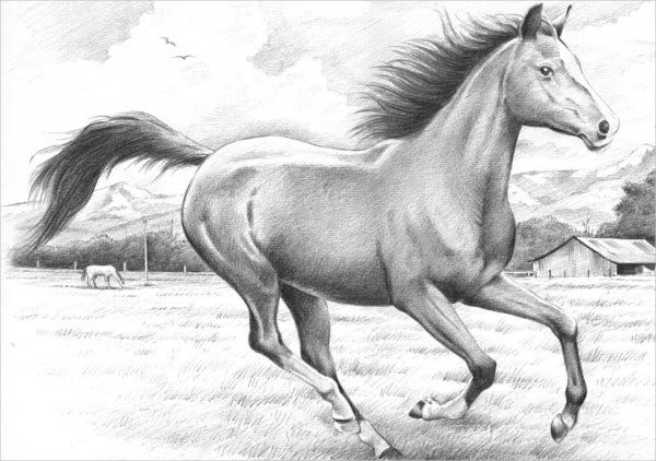 Pencil Sketch of Running Horse