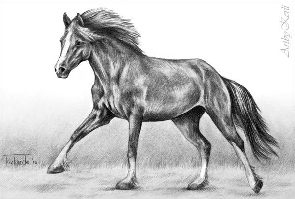 Old Sketch of Running horse