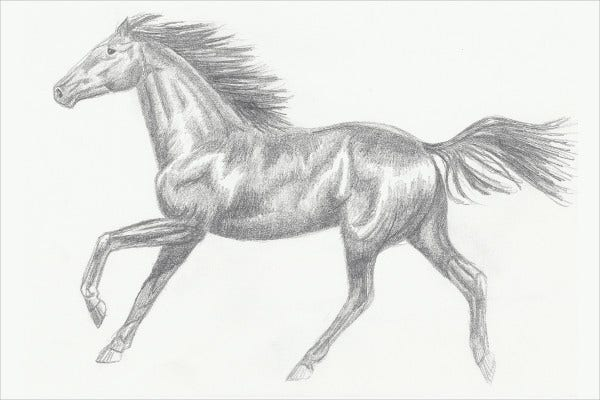 2 Clean Horse Sketches