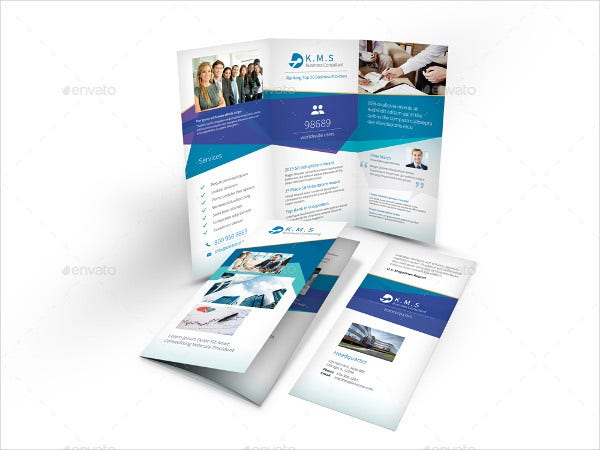 Business Consultant Brochure