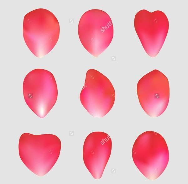 rose-petal-vector
