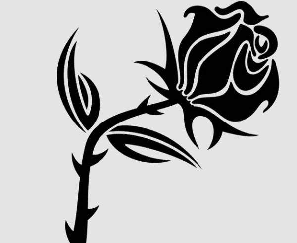 black-rose-vector