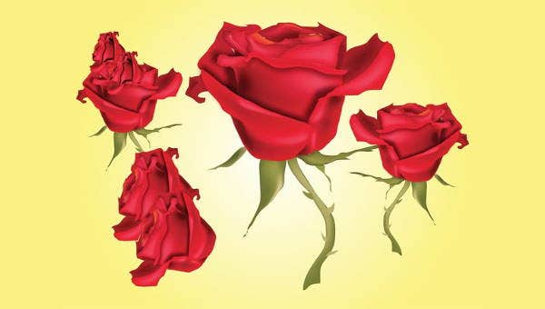 9 Rose Vectors Psd Vector Eps Png Free Premium Templates