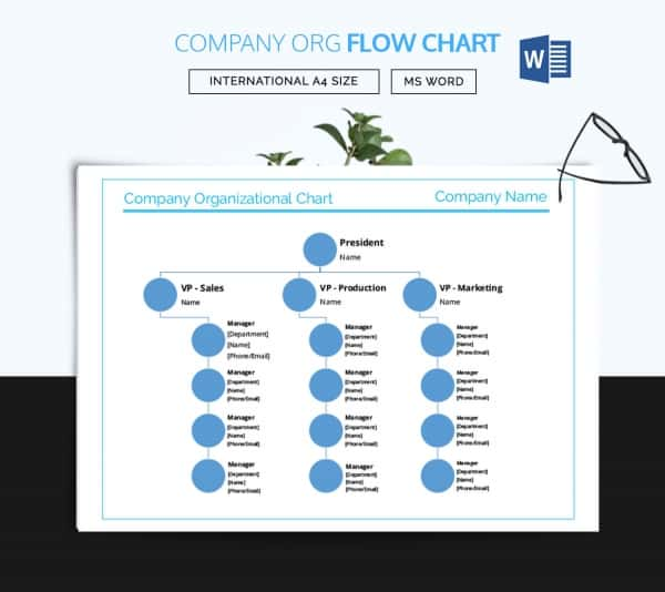 Company Flow Chart Template  Organizational Flow Chart Template Word