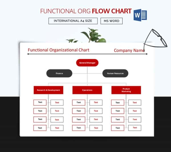 Functional Flow Chart Template Download  Organizational Flow Chart Template Word