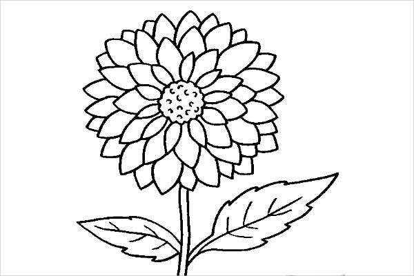 cool flower coloring page