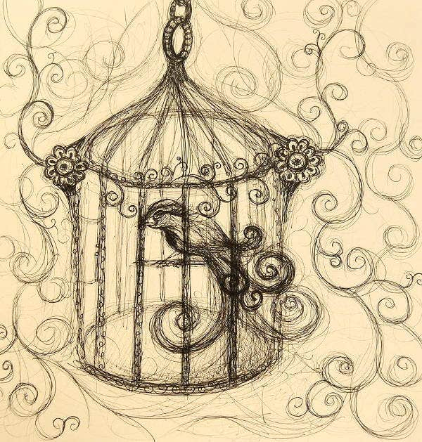 bird-cage-drawing