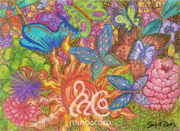 colorful-butterfly-drawing