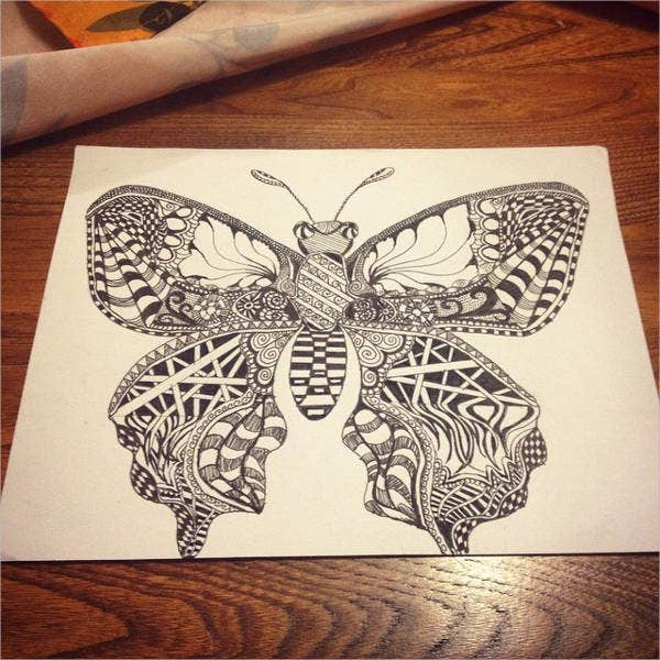realistic-butterfly-drawing