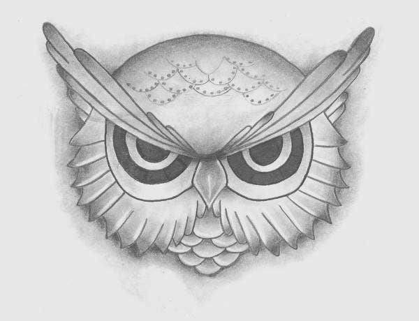 owl-pencil-drawing
