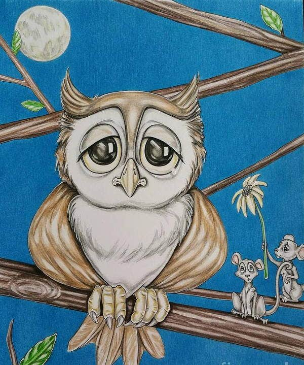 cartoon-owl-drawing