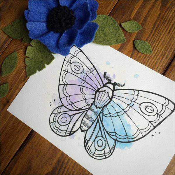 pastel butterfly drawing