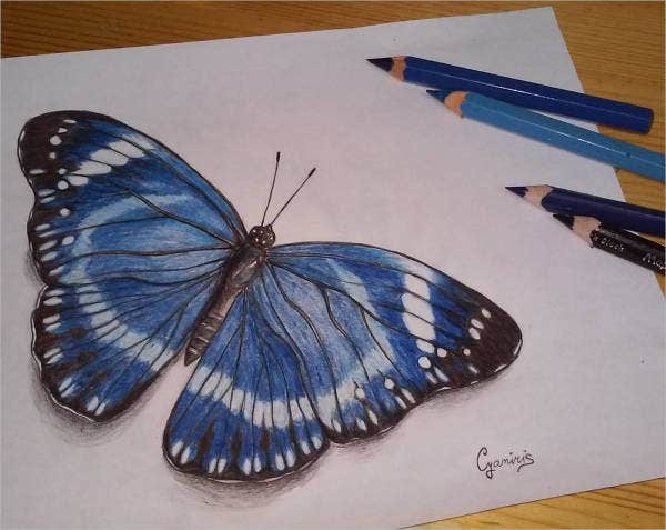 abstract butterfly drawing1