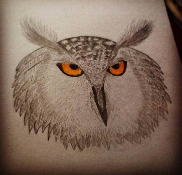Owl Eye Drawing