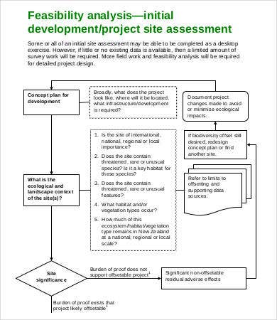 Project Feasibility Analysis Template