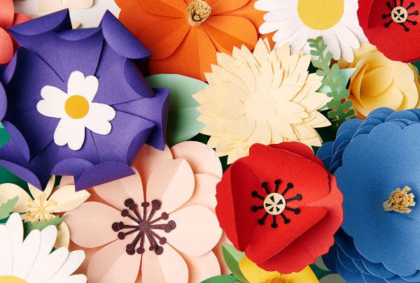Set of Paper Flower Templates