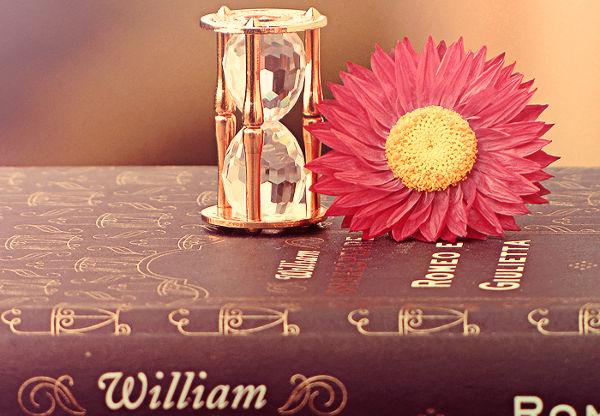 Conceptual Paper Flower Template