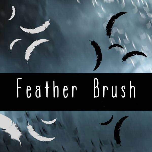 black-and-white-feather-brushes