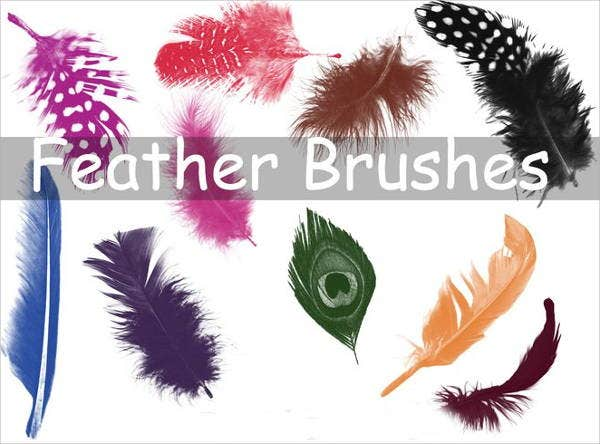photoshop-realistic-feather-brushes
