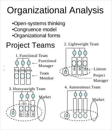 Strategic Organizational Analysis Template