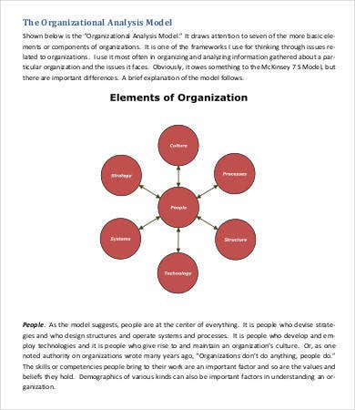 Organizational Analysis Model Template