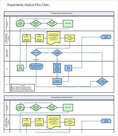 Information Technology Requirements Analysis Template